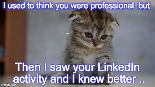 I used to think you were professional kitten